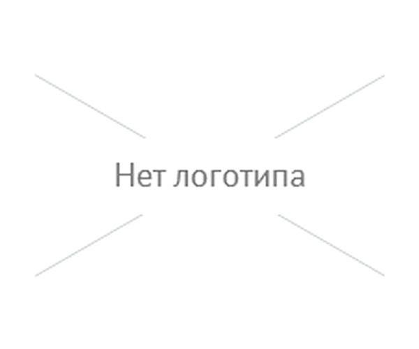 Изображение логотипа компании Ellion