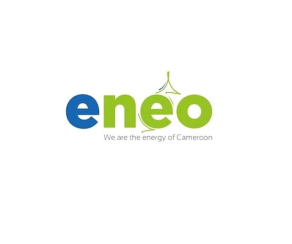 Изображение логотипа компании Eneo