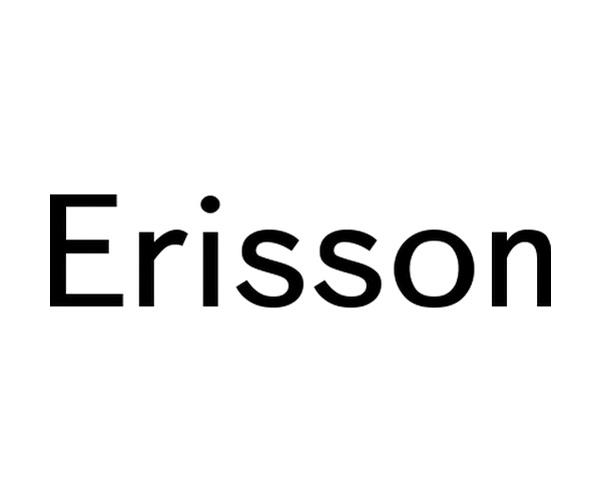 Изображение логотипа компании ERISSON