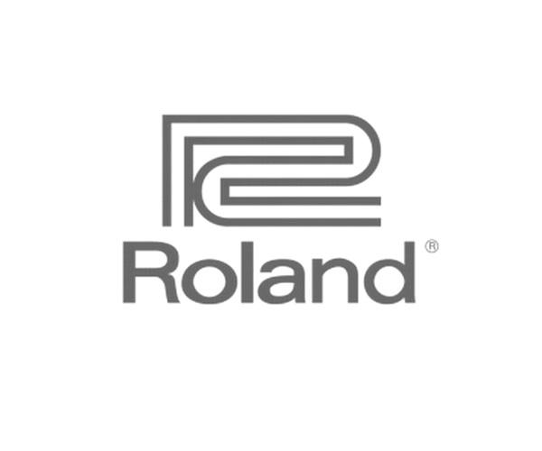 Изображение логотипа компании Roland