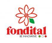 Изображение логотипа компании FONDITAL